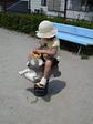 コアラに乗る小奈良